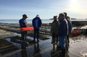 Group of people on the flats during Shellfish Farm Tour