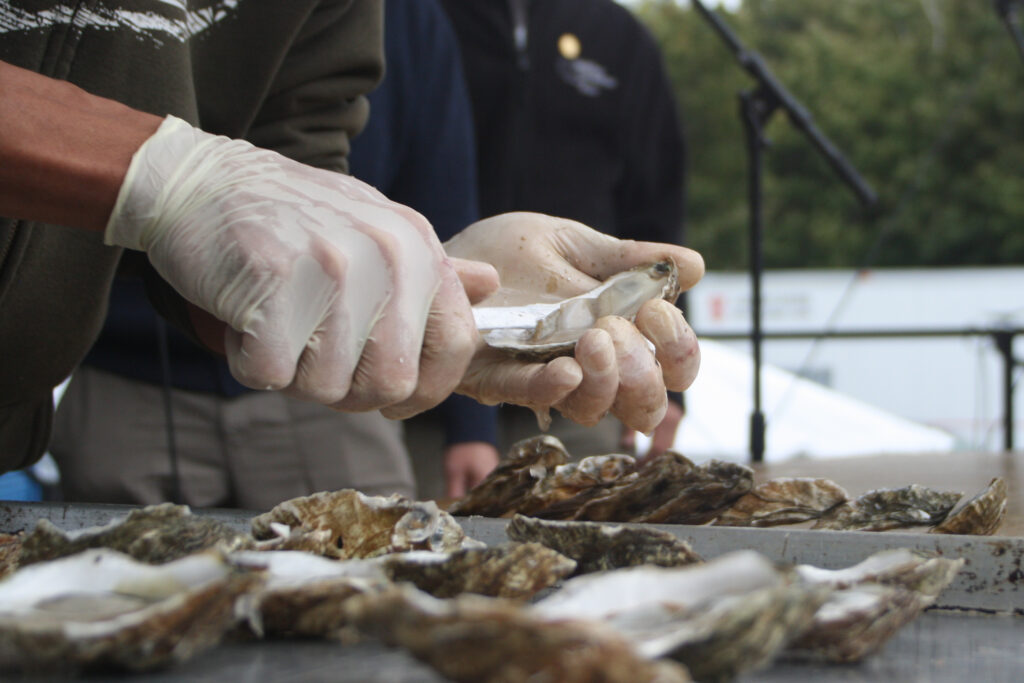 Closeup of two hands holding an oyster and knife demonstrating how to shuck